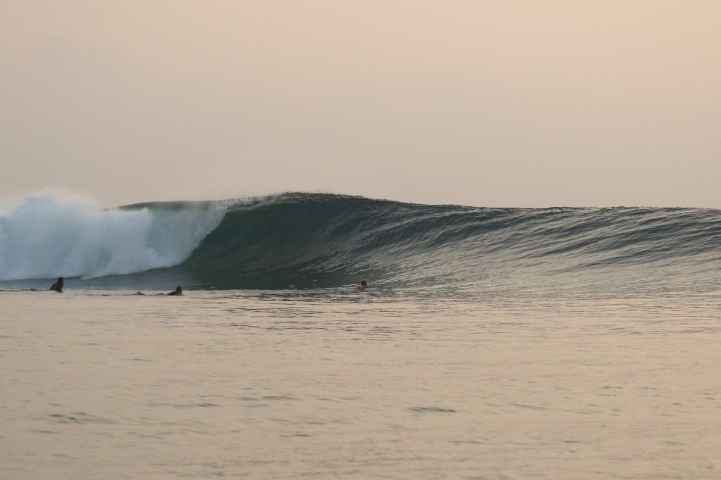 Mentawai2015